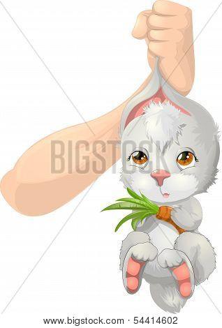 Trap Rabbit