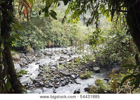Rio Mindo in Western Ecuador