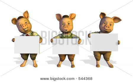 Three Little Pigs Holding Signs