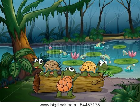 Illustration of a forest with turtles and fishes at the pond