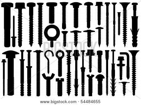 Set of different screws