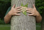 image of recycled paper  - Person wrapping their arms around a tree holding a leaf and a recycling symbol on recycled cardboard - JPG