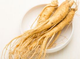 picture of ginseng  - Fresh Ginseng in the bowl - JPG