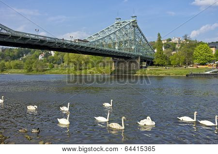Dresden, Germany, Blaues Wunder Bridge