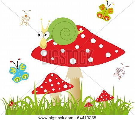 Colorful Background With Butterfly And Amanita