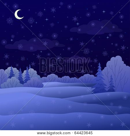 Landscape, night winter forest