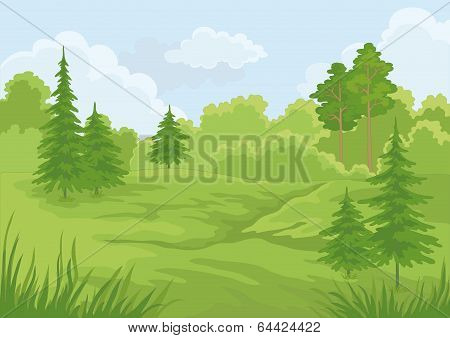 Landscape, summer forest