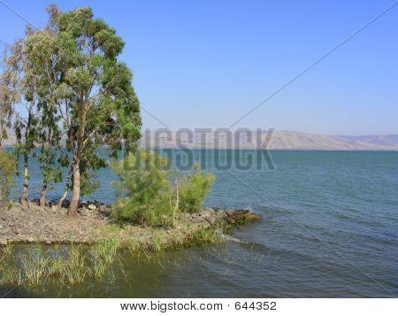 Lake Kineret