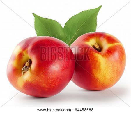 Two Ripe Juicy Nectarine With Leaves