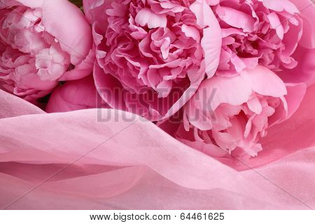 Peony flowers on silk,closeup.