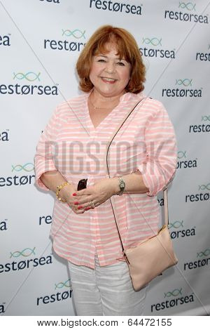LOS ANGELES - MAY 3:  Patrika Darbo at the RESTORSEA Gifting of Skin Care Product at NEMO on May 3, 2014 in West Hollywood, CA