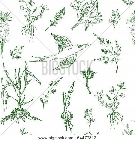 Garden flowers seamless pattern sketch