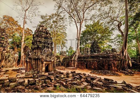 a Prohm temple with giant banyan trees at Angkor Wat complex Siem Reap Cambodia