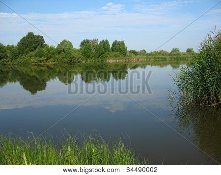 Lake And Trees On Bank