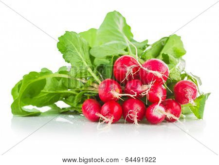 Fresh ripe radish vegetable with green leaves. Isolated on white background