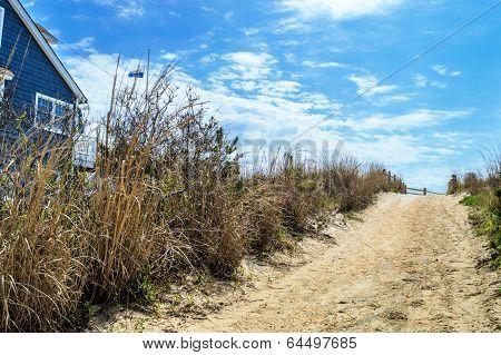 Beach Pathway Surf City
