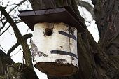 stock photo of nesting box  - Detail of the nesting box for birds - JPG