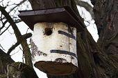 pic of nesting box  - Detail of the nesting box for birds - JPG