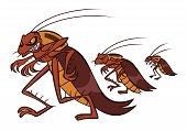 stock photo of cockroach  - Angry cockroaches go to seize apartments of innocent people - JPG