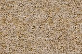 pic of pumice stone  - porouse scrub texture seamless background foam stone limestone or volcanic pumice - JPG