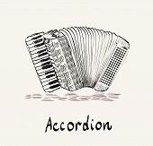 picture of accordion  - hand drawn accordion on a light background - JPG