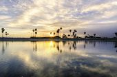 foto of row trees  - The sunrise over Sail bay in Mission Bay over the Pacific beach in San Diego California in the United States of America - JPG