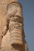 stock photo of xerxes  - carving on the Xerxes gate at the ancient Achaemenid city of Persepolis in Iran - JPG