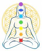 stock photo of plexus  - Meditating woman with the seven main chakras - JPG