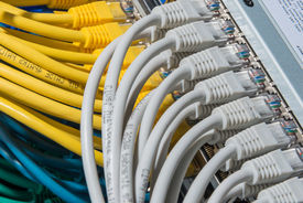 picture of cat5  - network cables connected to switch  - JPG