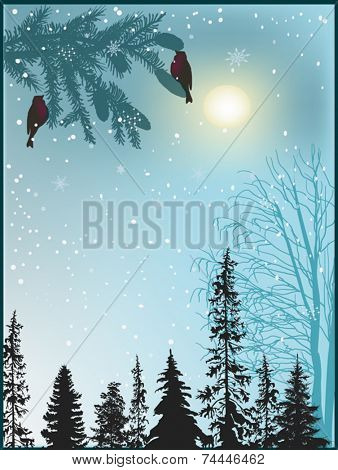illustration with winter forest in snow
