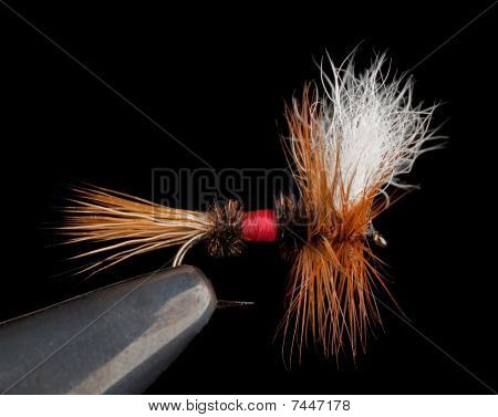 Royal Wulff Dry Fly for Trout