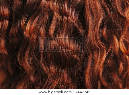 Close-up Of Red Curly Hair