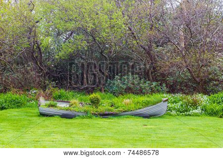 Overgrown Rowboat In A Backyard