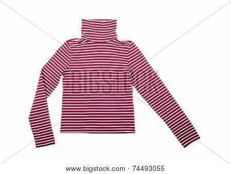 Striped Turtleneck Isolated on White