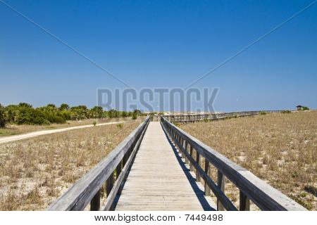 Boardwalk In The Dunes