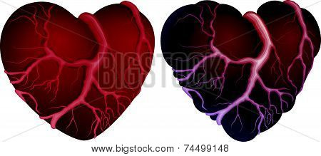 Two heart shapes
