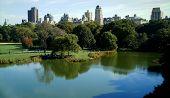 Постер, плакат: Центральный парк Нью Йорк