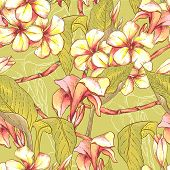 picture of jungle flowers  - Tropical seamless pattern with exotic flowers - JPG
