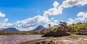 foto of galway  - Rocky island with trees in Letterfrack in County Galway - JPG