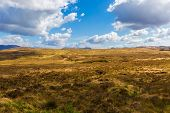 stock photo of galway  - Landscape of County Galway in Connacht in County Galway - JPG