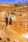 image of hoodoo  - Hoodoos and pinnacles of red Navajo sandstone on the Navajo Loop trail Bryce Canyon National Park Utah - JPG