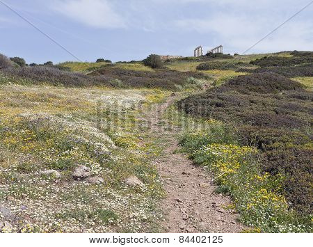 Colorful flowers on a slope towards the Mediterranean Sea.