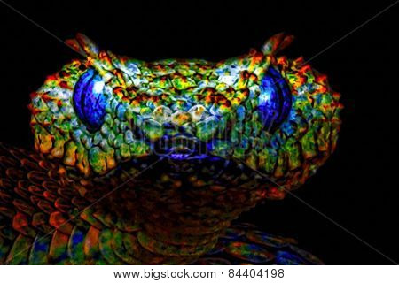 A Digitally Constructed Painting Of A Colourful Snakes Head