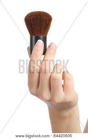 Woman Hand Holding A Makeup Brush