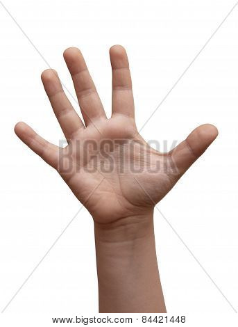 Isolated Child Hand Shows The Number Five