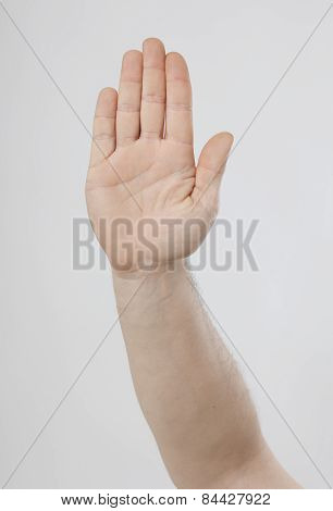 Hand Showing Stop