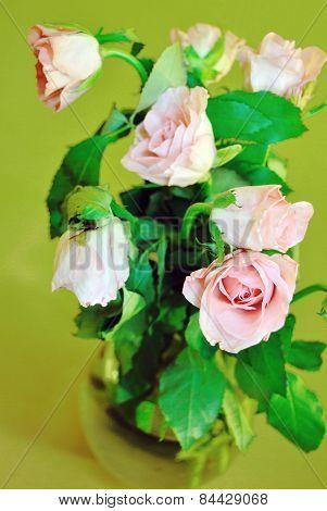 rose bouqet in vase on green background