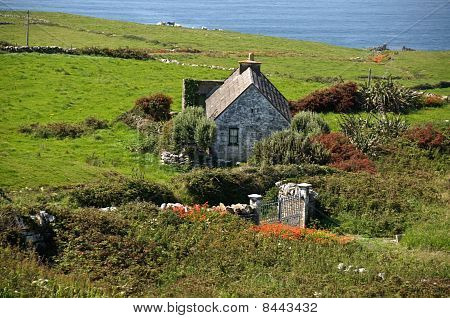 Cute Irish Cottage By The Ocean For Rental
