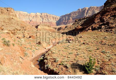Stream bed beneath Vermilion Cliffs National Monument