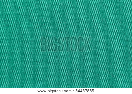 Interlacing Texture Fabric Of Green Color